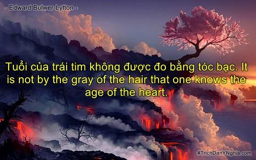 Tuổi của trái tim không được đo bằng tóc bạc. It is not by the gray of the hair