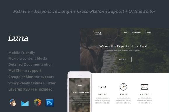 Creativemarket Luna - Premium Newsletter Template