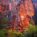 the pulpit - Zion National Park - 4-26-15  01 - Explore! by Tucapel