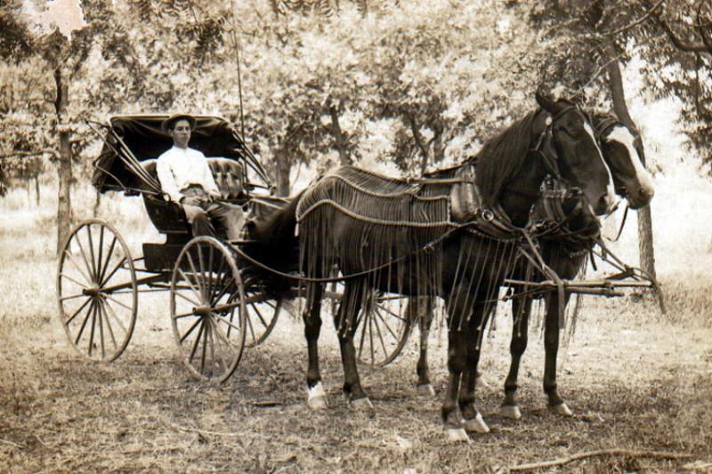 A horse and buggy circa 1910