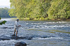 Man Fly fishing in the New River at New River State Park - edited