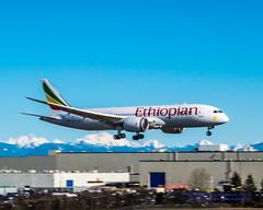 ET-ATH, A 787-8, Sliding Into Paine Field