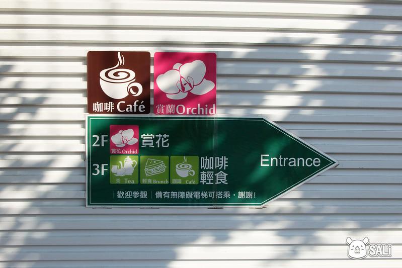 菁芳園落羽松-12