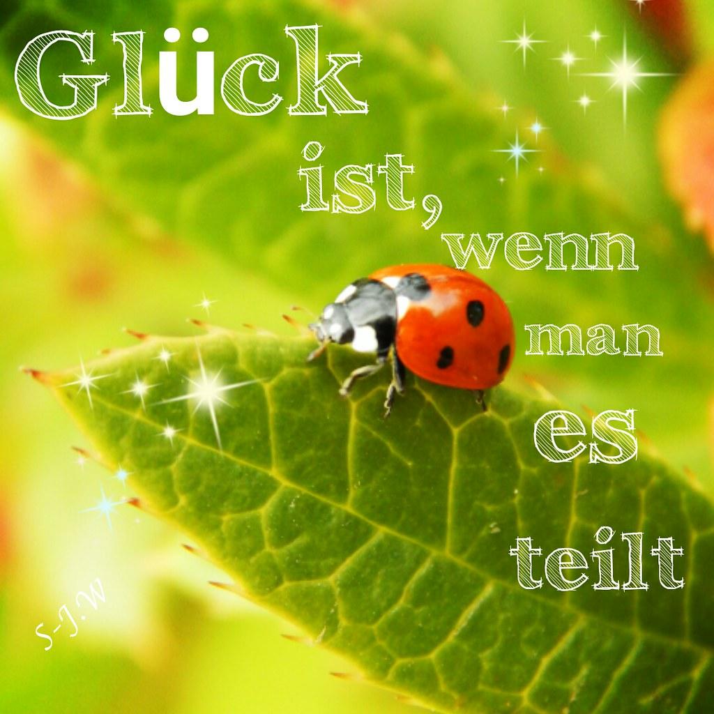 Astounding Sprüche über Das Glück Photo Of #nevergiveup # Glück #quotesandsayings # Zitat #motivation