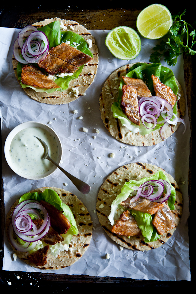 Pork Belly Tacos With Cilantro Avocado Cream