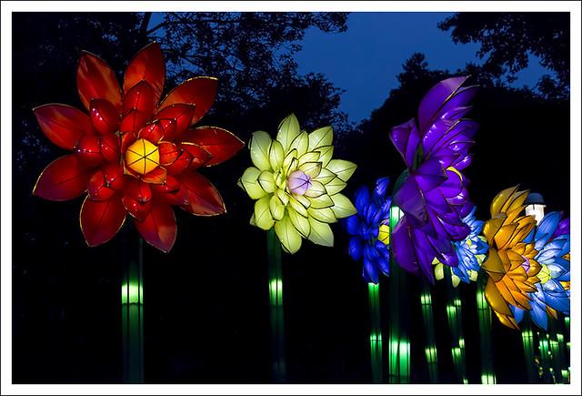 Lantern Festival MoBot 2015-08-28 18