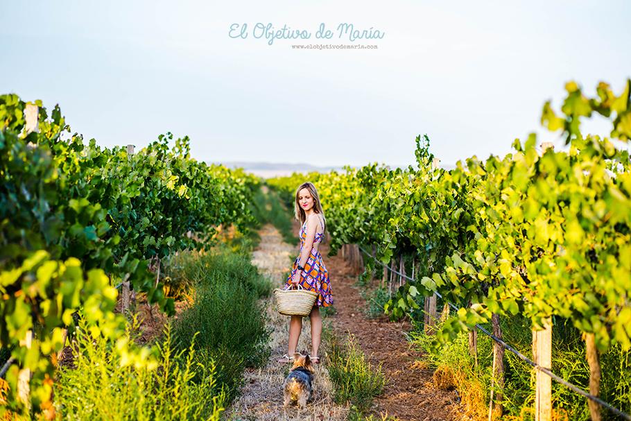 Septiembre en La Mancha