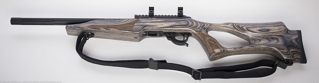 Tactical Solutions X-Ring 10/22
