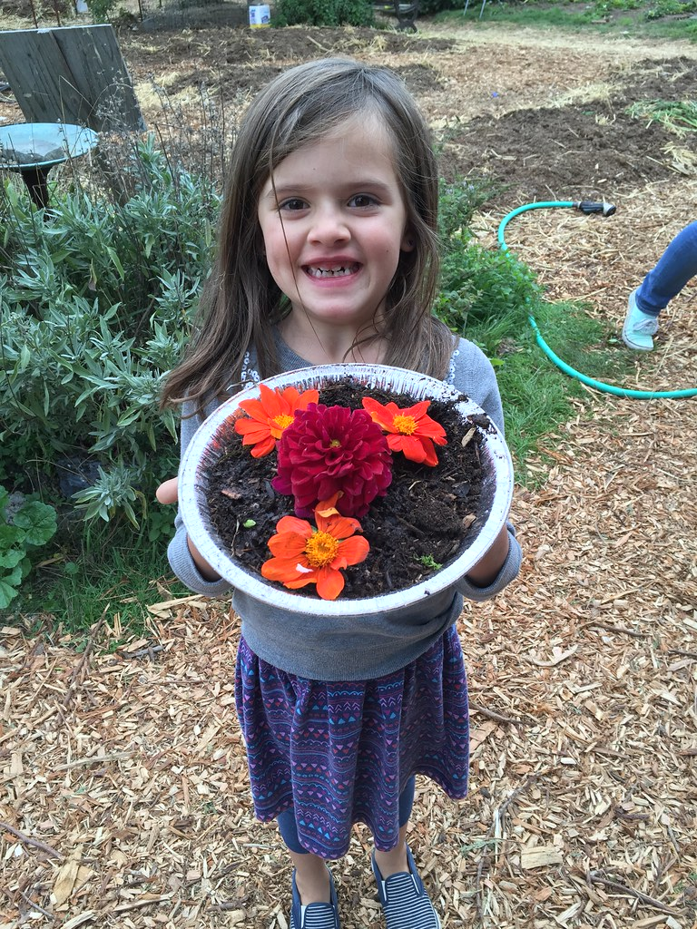 cate's beautiful mud pie at the harvest festival