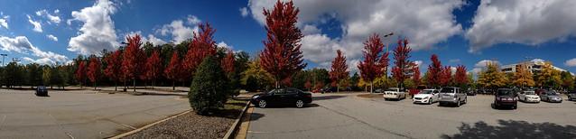 Autumn Colors Light Up A Parking Lot