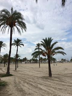Изображение на Platja de Palma близо до s'Arenal. españa de playa el can mallorca palma pastilla arenal baleares sarenal