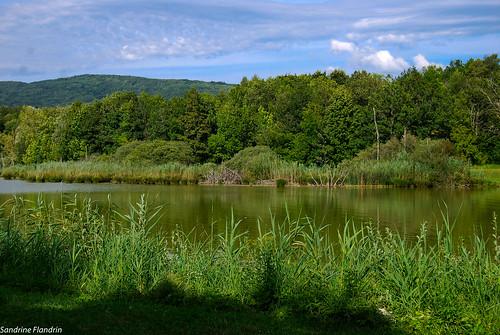 Lac des Alliètes à Songieu