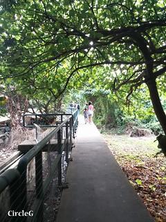 CIRCLEG 遊記 閒遊散步 南丫島 (4)