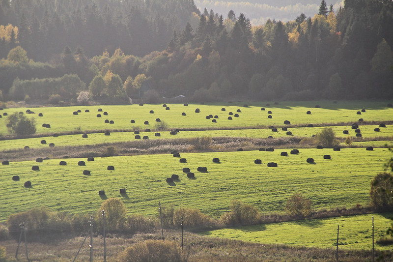 Sortavala October, 2011-352