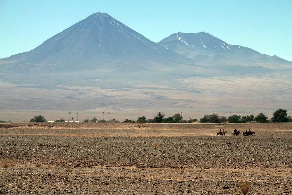 cheval Atacama