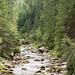 <p><a href=&quot;http://www.flickr.com/people/gicmo/&quot;>gicmo</a> posted a photo:</p>&#xA;&#xA;<p><a href=&quot;http://www.flickr.com/photos/gicmo/23441918575/&quot; title=&quot;CJK_1505.jpg&quot;><img src=&quot;http://farm1.staticflickr.com/725/23441918575_2c3e2f1e8c_m.jpg&quot; width=&quot;160&quot; height=&quot;240&quot; alt=&quot;CJK_1505.jpg&quot; /></a></p>&#xA;&#xA;