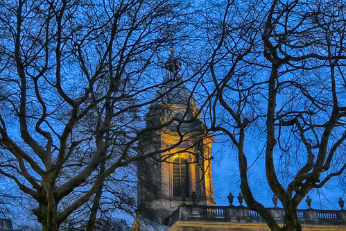 20170123_Cathedral in branches