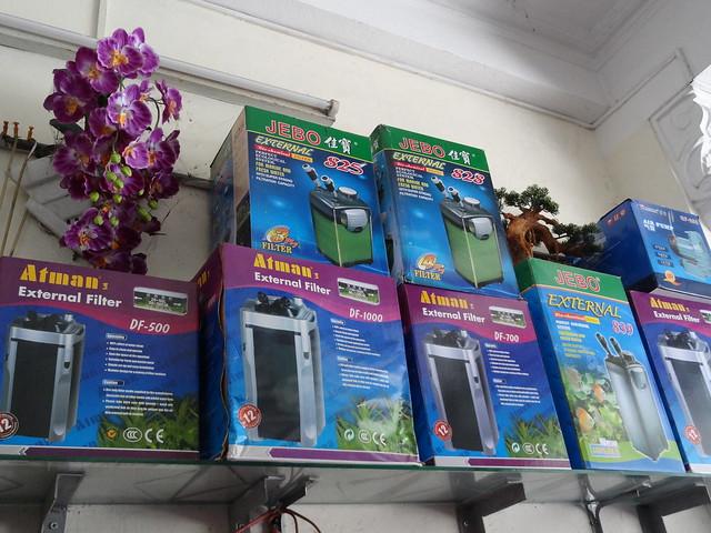 aquarium stores in Danang, Vietnam 20213080653_c275965395_z