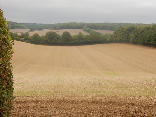 Chiltern fields