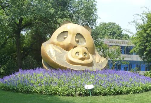 CH-Chengdu-Panda-géant (1)