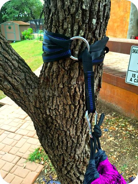 purple hammock straps