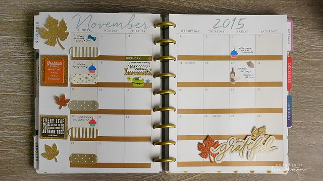 Plan With Me Week 45 and November 2015