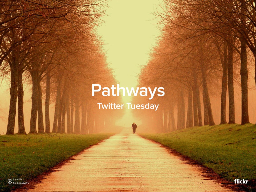 Twitter Tuesday: Pathways