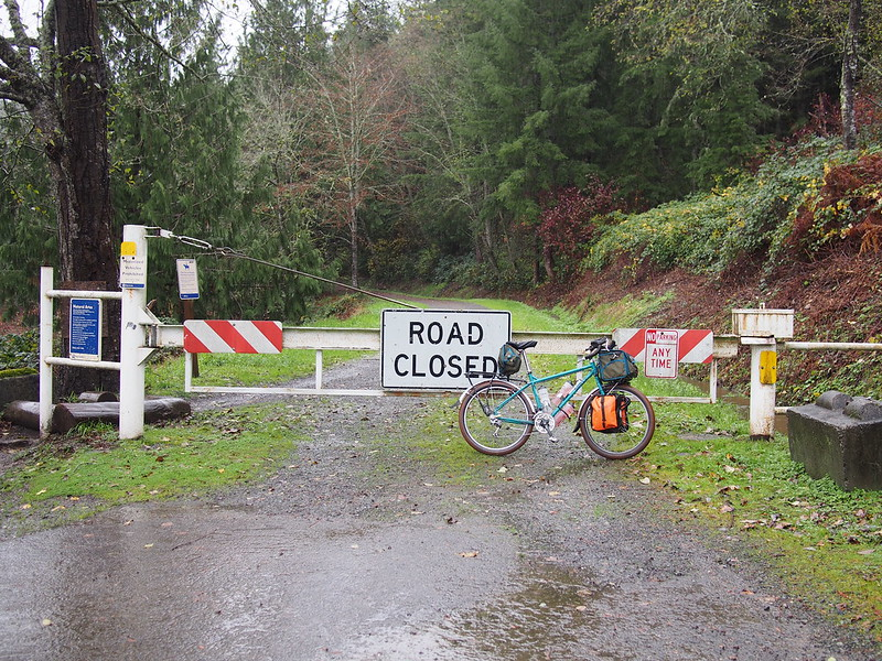 Path to Snoqualmie Valley Trail: I've heard of a way to get to the Snoqualmie Valley Trail from Fall City, but hadn't thought of it until planning this.  Aside from having to work hard to get around the gate due to some badly-placed logs (which caused a deep puddle to form), it was a nice route.