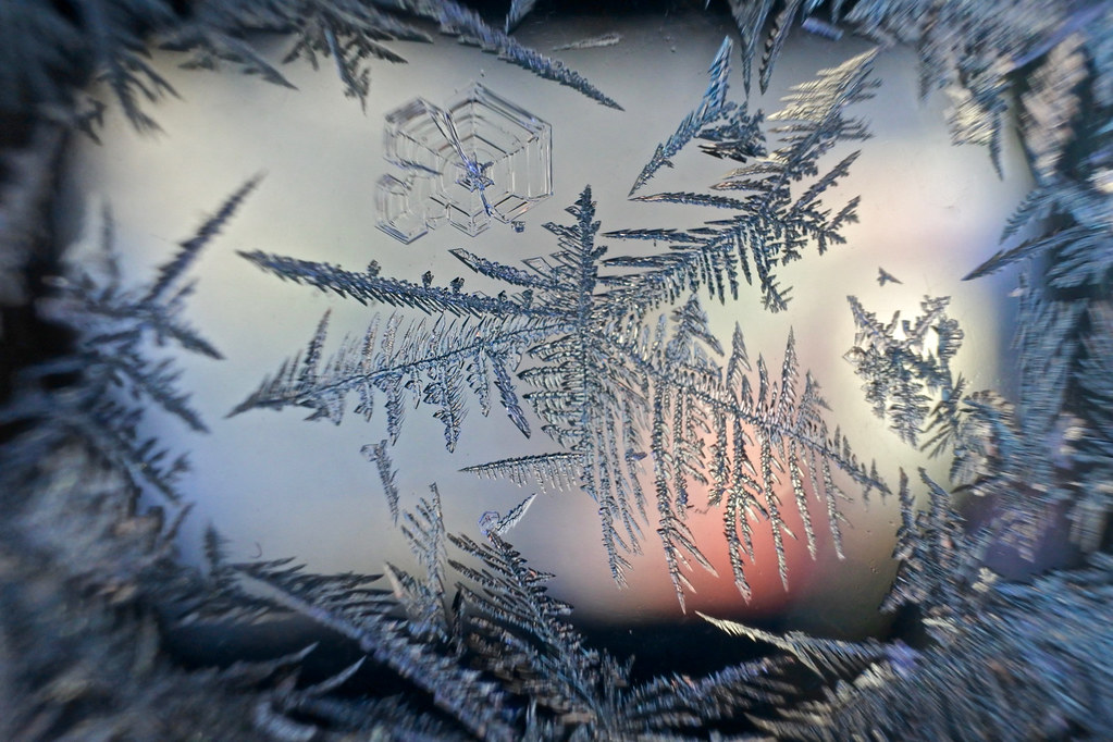 Frost fantasy 6