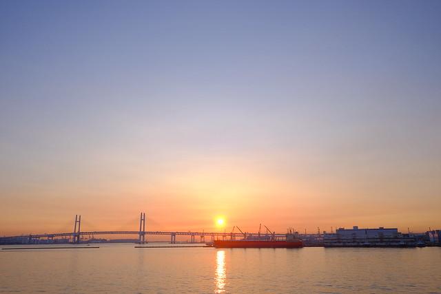 朝活 [機材沼] : 横浜の朝(2)
