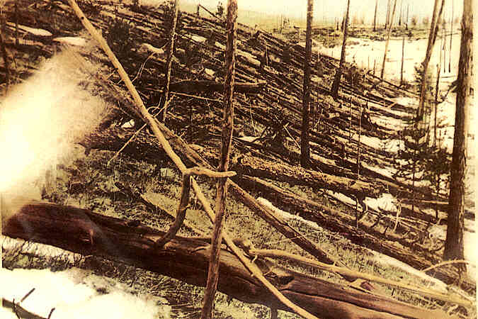 Trees knocked down and burned by the Tunguska meteoroid impact