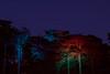 IMG_0655 by DarknessLit