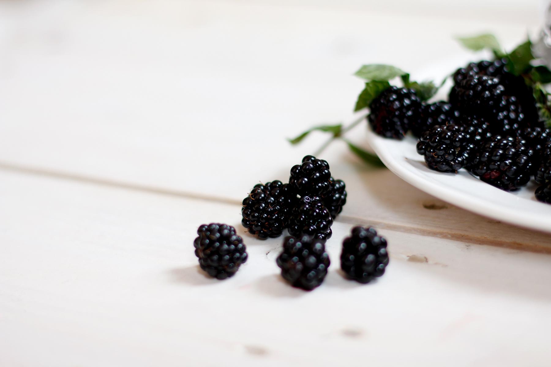 rezepte mit brombeeren rezept blackberry blackberries fruit autumn fall herbst obst gesund vegan backen dessert drink süß süßspeise lifestyle blogger ricarda schernus cats & dogs blog hannover düsseldorf berlin 1