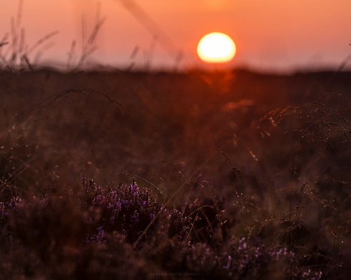 Sunrise over the Big Moor