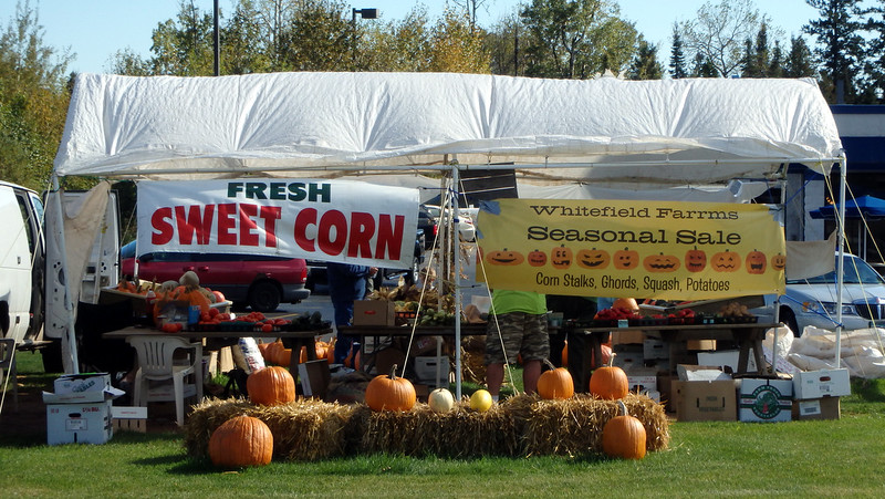signs for sweet corn and pumpkins under a white tent