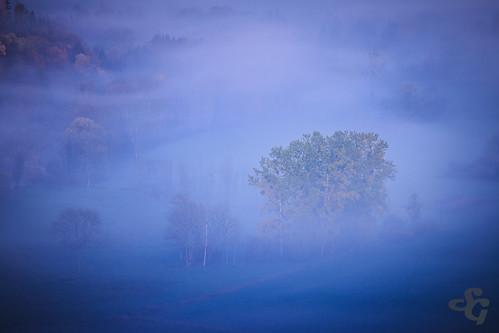 france automne de la etiquettes fr arbre brouillard franchecomté brume lieux vallée belvédère loue valléedelaloue importées motsclés etiquettesdemotsclésimportées montgesoye thuyère belvédèredelathuyère