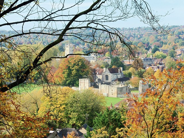 Wolvesley Castle