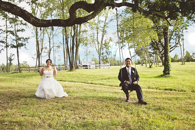Wedding from photographer