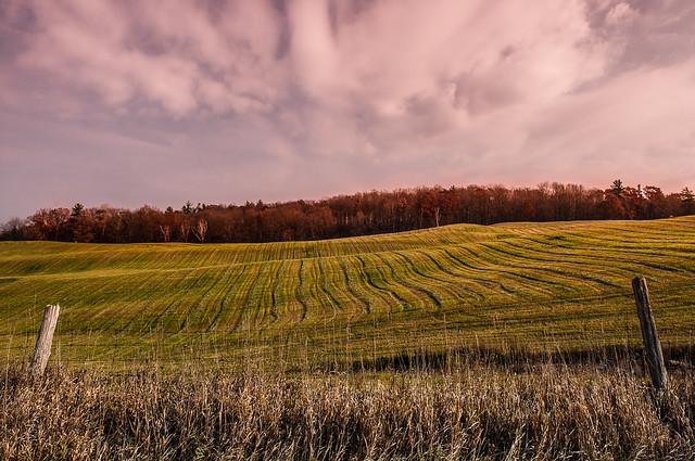Field of lines, Nikon D300S, AF-S DX Zoom-Nikkor 17-55mm f/2.8G IF-ED