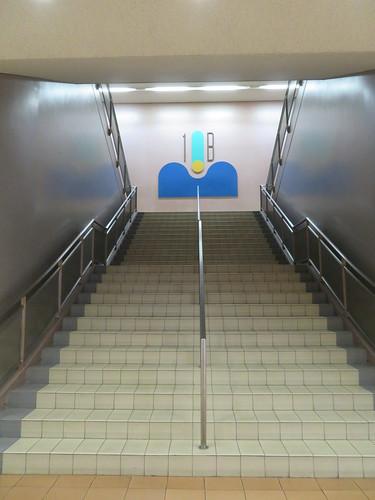 中山競馬場の階段
