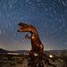 Star Trails Over Borrego Springs Sculpture by Jeffrey Sullivan