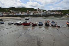 Staithes (277)