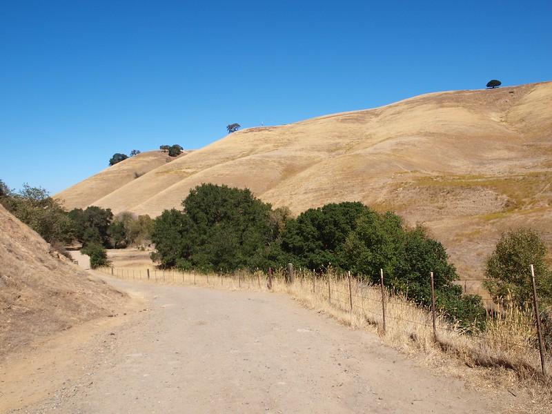 Diablo Foothills Regional Park - Part II