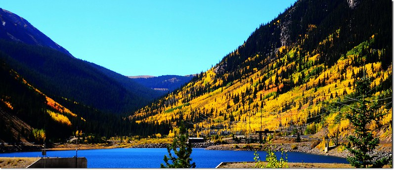 Fall colors at Guanella Pass, Colorado (4)