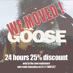 New GOOSE mainstore