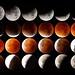 Blood moon (lunar eclipse 2015) by dmelchordiaz