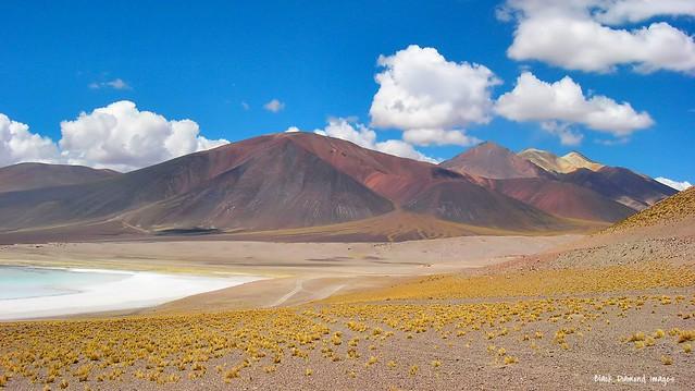 Laguna Tuyajto (4,035m - 13,238') near Socaire, San Pedro de Atacama, El Loa Province, Antofagasta Region, Chile