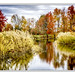 Apple pond farm by jsleighton