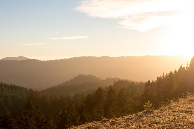 11.01. Big Basin SP: Summit Peak+Meteor Trail