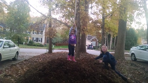 Queens of Mulch Mountain